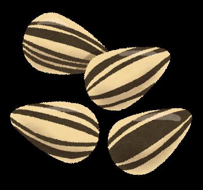 nuts_himawari