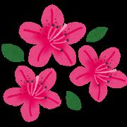 flower_tsutsuji